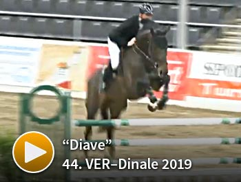Diave 44. VER-Dinale 2019